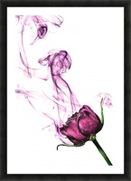 The Smoke Picture Frame print