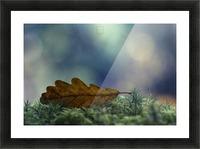 leaf Picture Frame print
