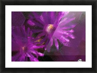 Ice Plant Blossoms Under Ice Picture Frame print