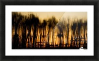 Reflections In Water Picture Frame print