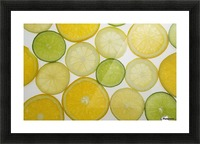 Citrus Slices Picture Frame print