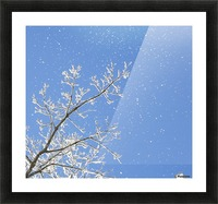 Snowy Day Picture Frame print