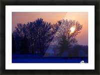 Sun Peeking Through Some Trees Picture Frame print