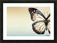 Artistic Butterfly Picture Frame print