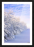 Covered In Snow Picture Frame print