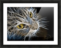 Cat Abstracto Picture Frame print