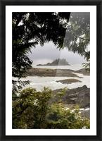 Coastal Scenery, Tofino, British Columbia, Canada Picture Frame print