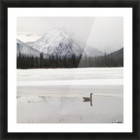 Winter Landscape, Banff National Park, Alberta, Canada Picture Frame print
