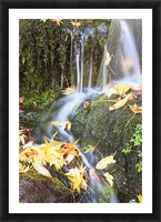 Oregon Cascades, Oregon, Usa Picture Frame print