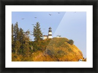 Birds In Flight Over Cape Disappointment Lighthouse; Ilwaco, Washington, United States of America Picture Frame print