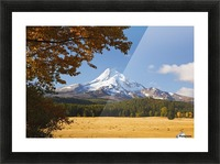 Mount Hood And Autumn Colours In Hood River Valley; Oregon, United States of America Picture Frame print