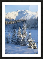 Scenic View Of Chugach Mountains And Snowcovered Landscape, Southcentral Alaska, Winter Picture Frame print