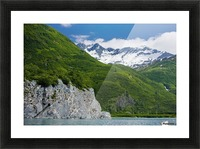 Kittiwake Rookery, Shoup Bay State Marine Park, Prince William Sound, Southcentral Alaska, Summer Picture Frame print