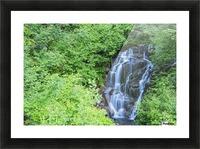 Stevens creek waterfall mount rainer national park near seattle;Washington united states of america Picture Frame print