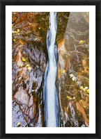 Water flowing in beautiful stone rivet along the subway trail in zion national park;Utah, united states of america Picture Frame print