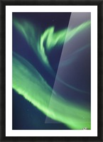 A green northern lights corona in the sky above the tony knowles coastal trail in winter;Anchorage alaska united states of america Picture Frame print