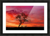 lonely sunset Picture Frame print