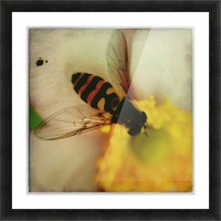 Bee-ing Picture Frame print