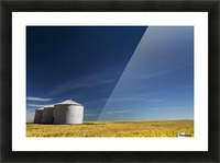 Large metal grain bins in a barley field with blue sky and wispy clouds; Acme, Alberta, Canada Picture Frame print