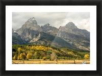 Grand Teton range in autumn, Grand Teton National Park; Wyoming, United States of America Picture Frame print