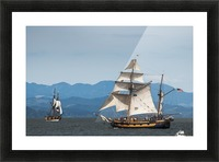 Tall ships sail on the Columbia River near Astoria; Oregon, United States of America Picture Frame print