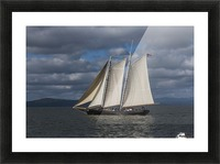 A large sailboat sails down the Columbia River; Astoria, Oregon, United States of America Picture Frame print