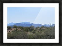 Tonto National Forest 1VP Picture Frame print