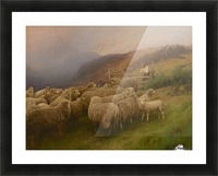 Landscape with sheep Picture Frame print