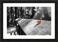 Holding On Picture Frame print