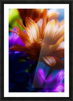 FPS-0059 Picture Frame print