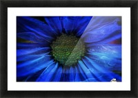 FPS-0064 Picture Frame print