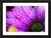 FPS-0068 Picture Frame print