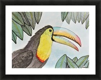 Toucan II  Picture Frame print