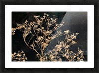 Natures Lace Picture Frame print