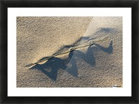 Grass Blade and Serpent Shadow Picture Frame print