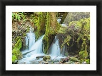 Rain Forest Cascade Picture Frame print