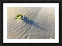 Evening Shadows on Dune Picture Frame print