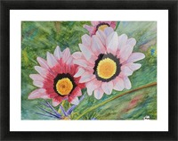 Two Daisies Picture Frame print