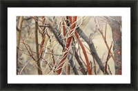 Twigs in the Sandia Mountains VP1 Picture Frame print