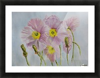 Pink Poppies Picture Frame print