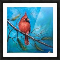 Mr. Cardinal Picture Frame print