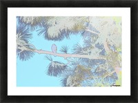 Red Shouldered Hawk in Large Pine Abstract 3 Picture Frame print