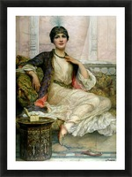 Portrait of a young lady Picture Frame print