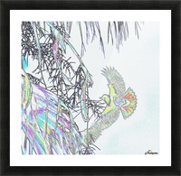 Orioles Abstract 3   Picture Frame print
