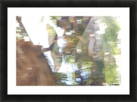 Bird of Prey In-Flight 1 Abstract Picture Frame print