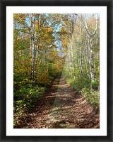 Fall foliage, Mount Pisgah, NB, Oct. 6, 2013 Picture Frame print