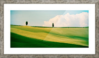 Tuscany Curves Picture Frame print
