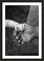 Baby's Hand Holding On To Adult Hand Picture Frame print