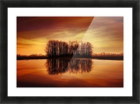 Silhouetted Trees Reflected On Water Picture Frame print