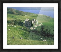 Clifden Castle, Co Galway, Ireland; 19Th Century Gothic Revival Style Castle Picture Frame print